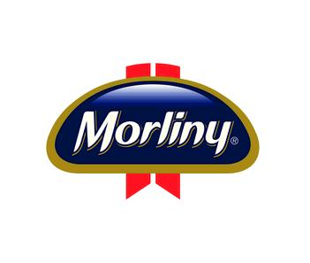 morlinylogo2013