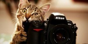 13 zasad pozowania do zdjęć.