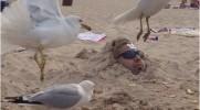 22 osoby, które przez jakiś czas powinny trzymać się z dala od plaży.