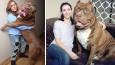 Hulk, który waży prawie 80 kg i ciągle rośnie, jest największym pitbullem na świecie.