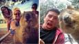 Selfie z Kuoką to obecnie najbardziej pożądane selfie i zarazem najsłodszy trend w Australii!