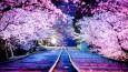 15 malowniczych miejsc, dla których powinieneś odwiedzić Japonię.