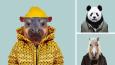 """Artysta przez 3 lata próbował """"ubrać"""" zwierzaki w ludzkie ubrania. Trzeba przyznać, że pasują idealnie!"""